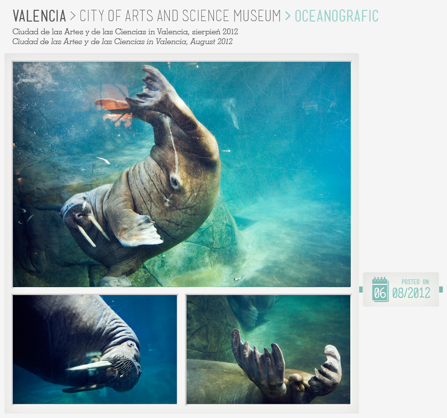 VELENCIA_OCEANOGRAFIC