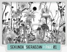 SEKUNDA&SIERADZAN_BLACK&WHITE