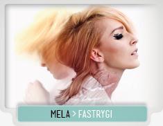 MELA_KOTELUK_FASTRYGI
