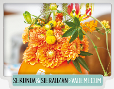 SEKUNDA&SIERADZAN_VADEMECUM