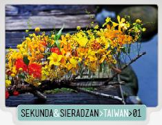 SEKUNDA&SIERADZAN_TAIWAN_01